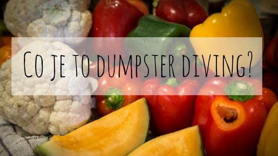 Dumpster diver, neoficiální inspektor kontejnerů- prostě jím z popelnic.