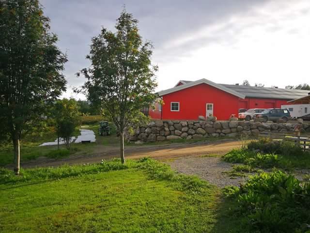 Práce na farmě v Norsku u města Rena