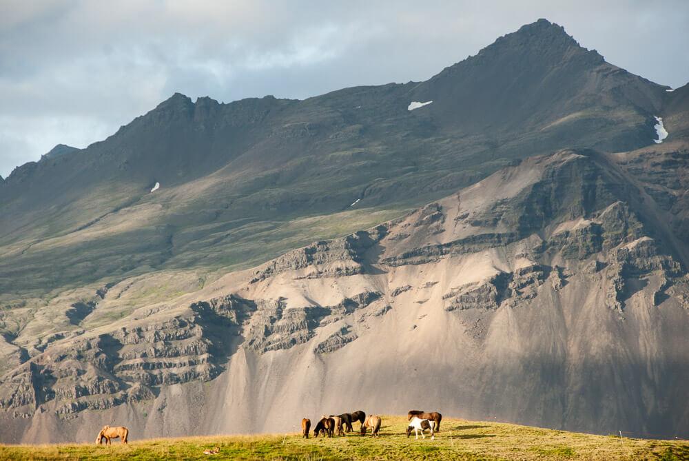 Půjčení auta na Islandu - výhledy z Ringroad