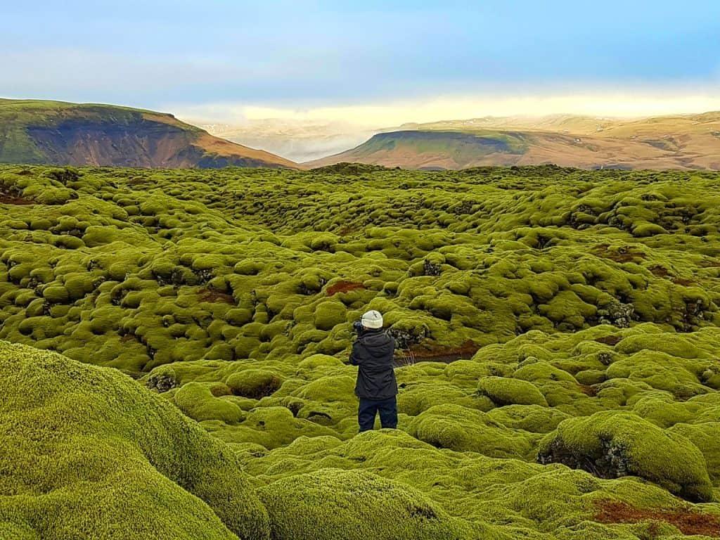nevstupujte na mech na Islandu