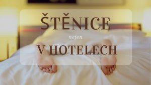 Štěnice v hotelech