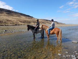 Island cestopis: Projížďka na islandských koních ve Varmahlíd