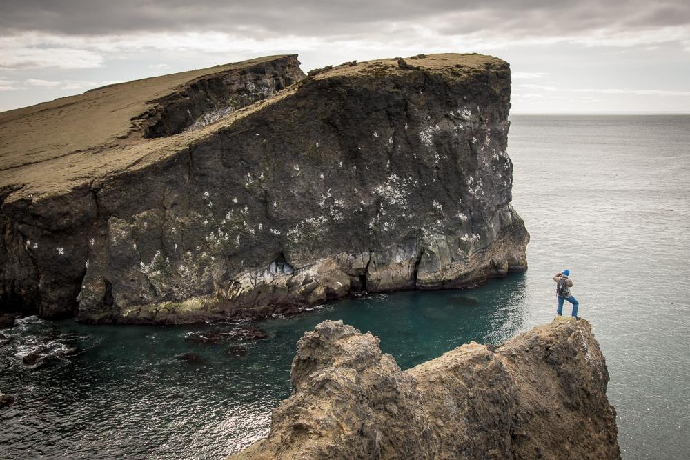 Ptačí útesy na poloostrově Reykjanes, Island