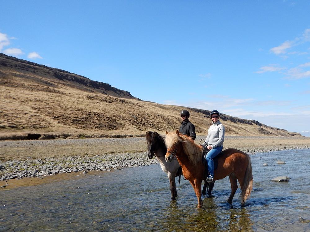 Koně na Islandu_Icelandic horses_Hestasport_Varmahlid_river