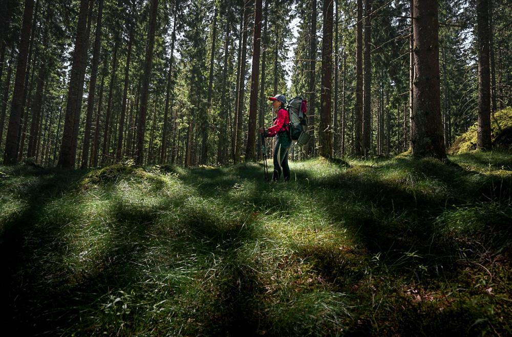 Dlouhej špacír aneb 3000 km pěšky skrze Norsko a Švédsko: Trekování léčí