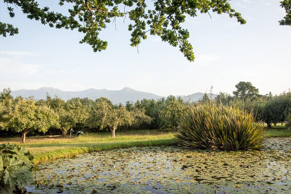 Surroundings of Villa Baviera, Chile