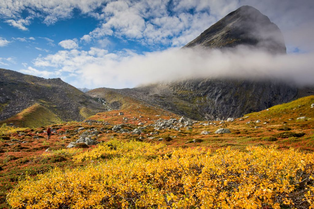 Reasons Why You Should Visit Norway in Autumn - Main Title