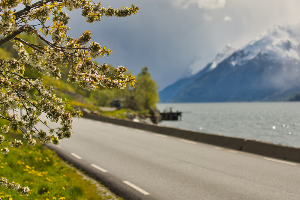 Narrow roads along Hardangerfjord
