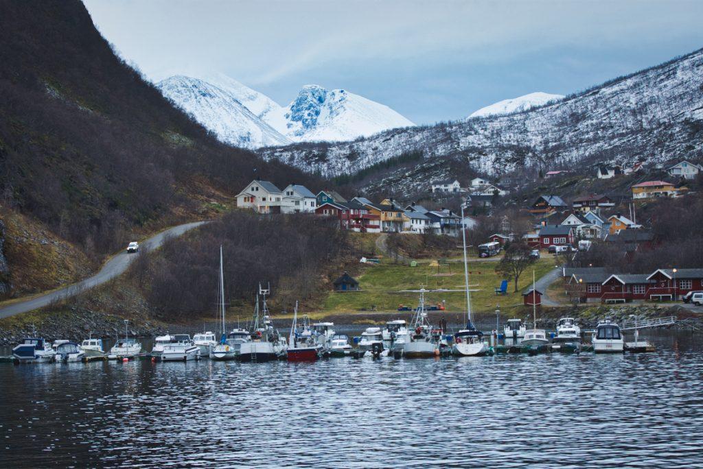 Ostrov Skjervøy na severu Norska, kam se jezdí za pozorováním velryb
