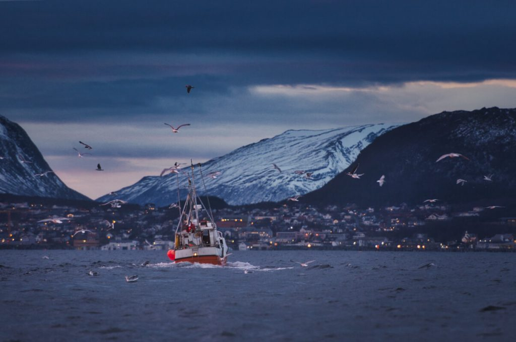 Rybářská loď lovící sledě u ostrova Skjervoy v Norsku
