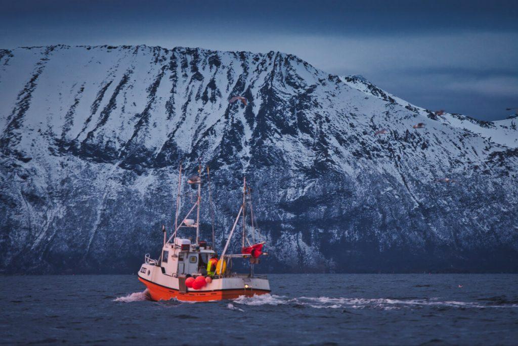 rybářské lodě lovící sledě na severu Norska
