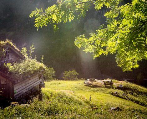 Norway-125